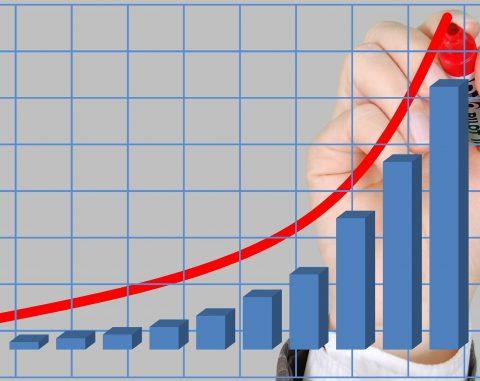 ניהול השקעות וניהול תיקים